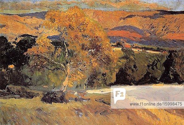 Joaqu?n Sorolla Y Bastida - Yellow Tree L Granja 1906.