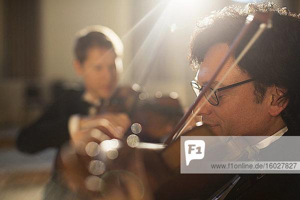 Violinisten beim Auftritt