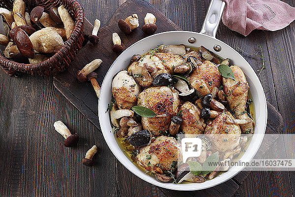 Chicken in a sauce with forest mushrooms