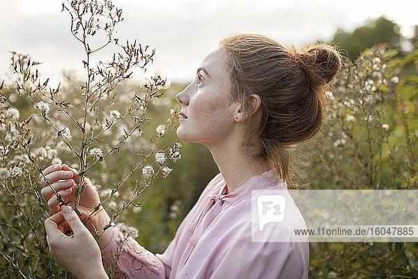 Russland  Omsk  Junge Frau auf der Wiese