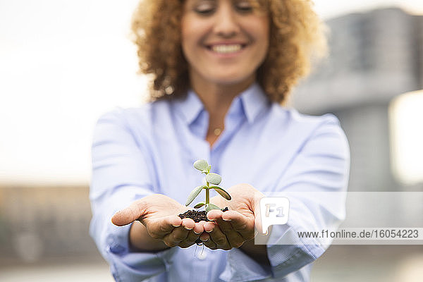 Close-up of female entrepreneur with curly hair holding small plant