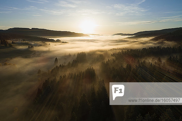 Germany  Baden-Wurttemberg  Drone view of Schluchsee lake shrouded in thick fog at sunrise