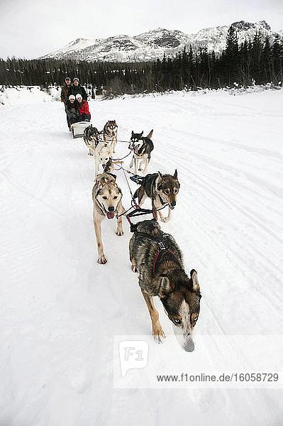 Eine Gruppe von Freunden geniesst eine Hundeschlittentour im Winter im südlichen Zentralalaska
