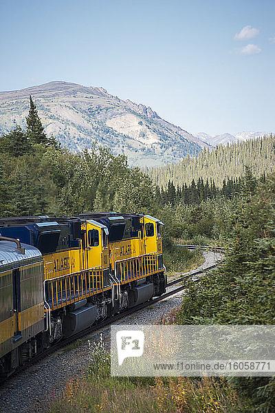 Blick von der Aussichtsplattform des Alaska-Eisenbahnzuges  der auf dem Weg zum Denali-Nationalpark an den Gleisen entlang fährt.