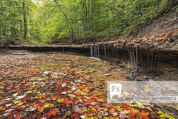 Mystery Falls  near Strathroy; Ontario  Canada