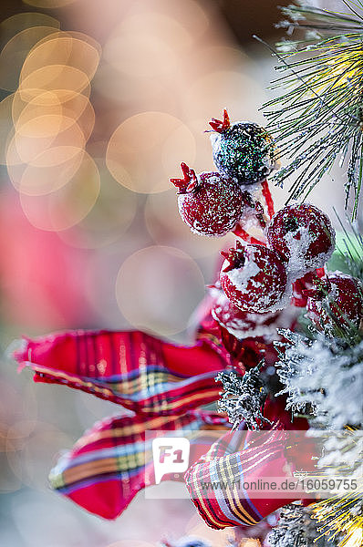 Close-up detail of Christmas decorations; British Columbia  Canada