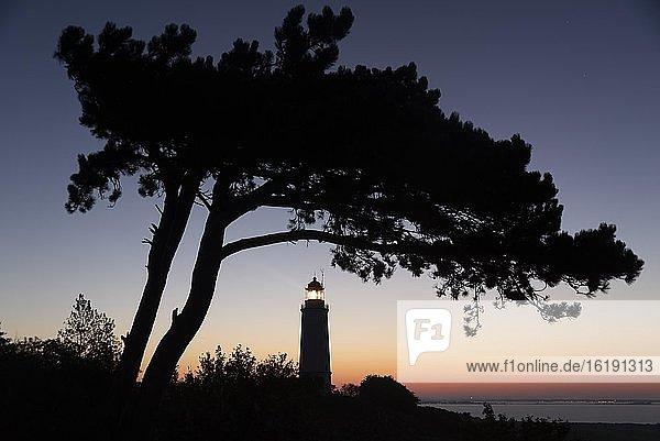 Leuchtturm Dornbusch auf dem Schluckwieksberg  Wahrzeichen der Insel Hiddensee  Nationalpark Vorpommersche Boddenlandschaft  Mecklenburg-Vorpommern  Deutschland  Europa