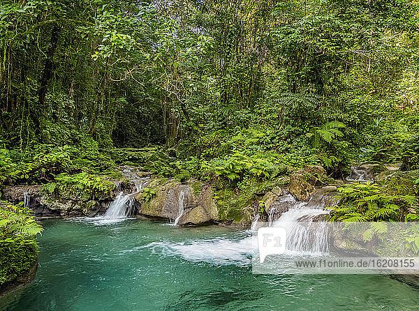 Reach Falls  Portland Parish  Jamaika  Westindische Inseln  Karibik  Mittelamerika