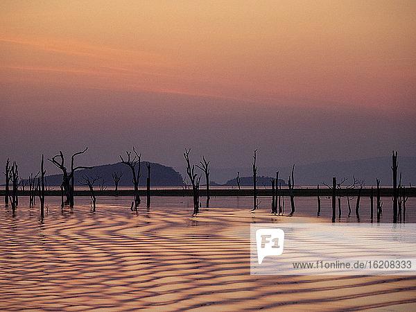Sonnenuntergang über dem Kariba-See  dem volumenmässig grössten von Menschenhand geschaffenen See und Stausee der Welt  Simbabwe  Afrika