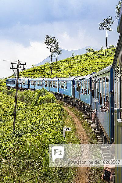 Zug von Kandy nach Badulla am Rande des Teeplantagen  Nuwara Eliya  Zentralprovinz  Sri Lanka  Asien