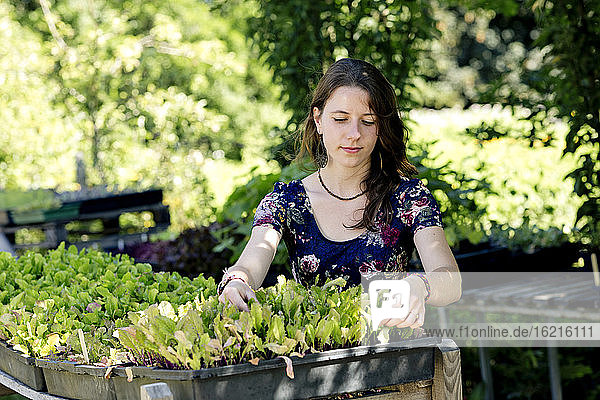 Young woman with plants tray sitting in community garden