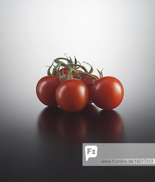 Rote Tomaten auf farbigem Hintergrund  Nahaufnahme
