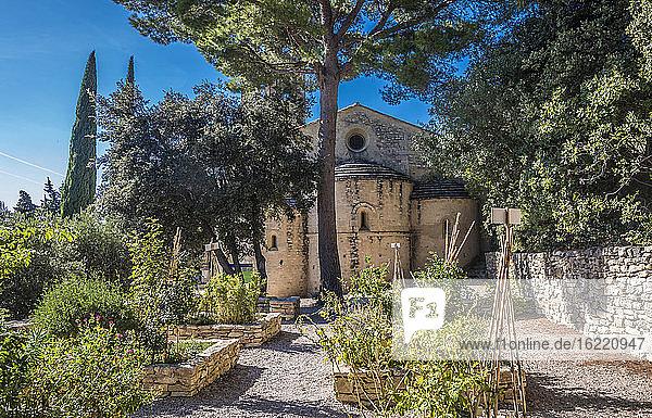 France,  Provence,  Vaucluse,  Beaumes de Venise,  Roman chapl Notre Dame d'Aubune