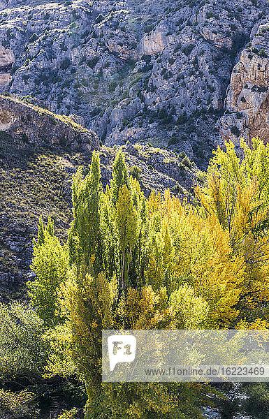 : Spain  autonomous community of Aragon  Province of Teruel  Sierra de Albarracin Comarca  Sierra de Albarracin landscape