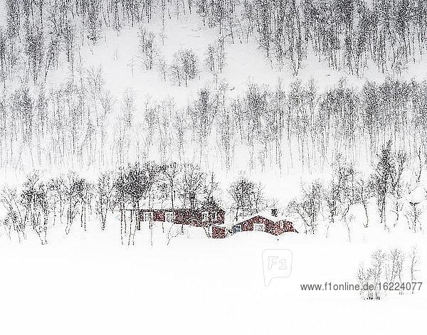 Norwegen  Bezirk Tromso  kleine rote Häuser isoliert im Schnee