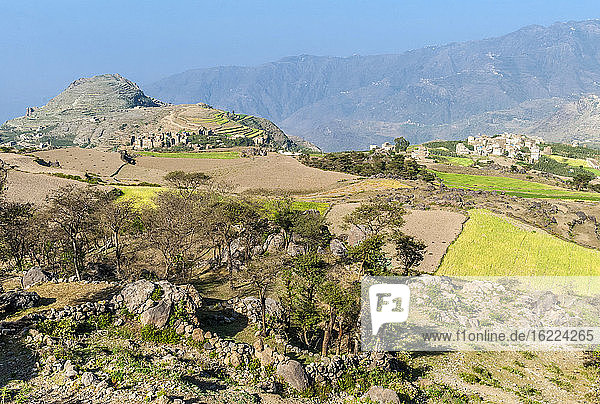 Middle East  Yemen  Center West  Jebel Harraz region (UNESCO World Heritage Tentative list)  villages and terrace cultivations (shooting 03/2007)