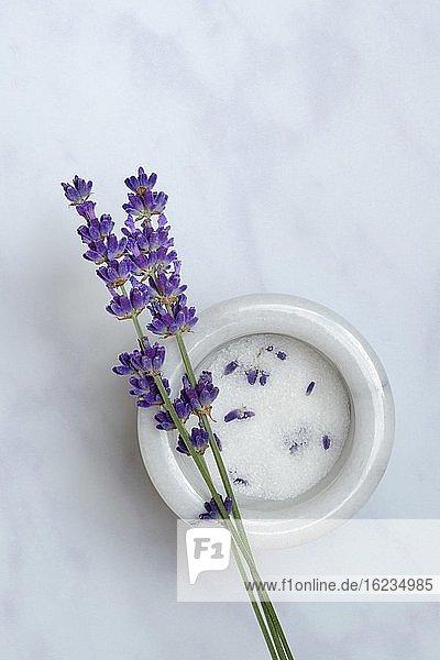 Lavendelzucker in Schale und Lavendelblüten