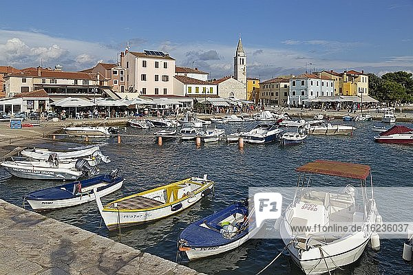 Boats in port  Fazana  Istria  Croatia  Europe