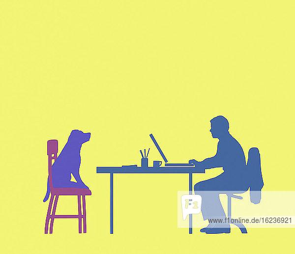 Hund sieht Mann beim Arbeiten im Home Office zu