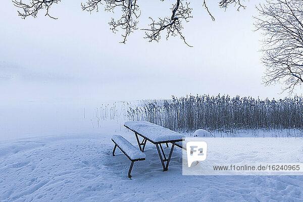Picknickbank im Winter