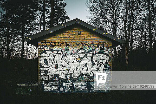 Graffiti auf verlassenem Gebäude
