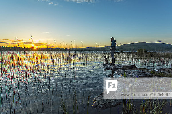 Man and dog standing on a rock at the edge of Lough Graney  watching the sunrise; County Clare  Ireland