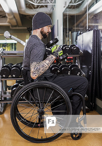A paraplegic man working out using free weights in front of a mirror at recreational centre: Sherwood Park  Alberta  Canada