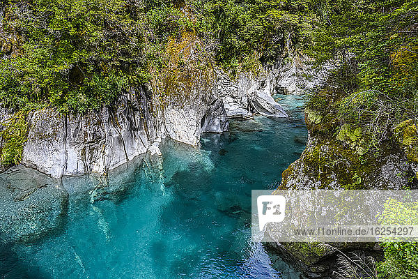 Wander through beautiful native forests and over a swing bridge to experience the pristine waters of Makarora River's blue pools  Mount Aspiring National Park; Wanaka  Otago Region  New Zealand