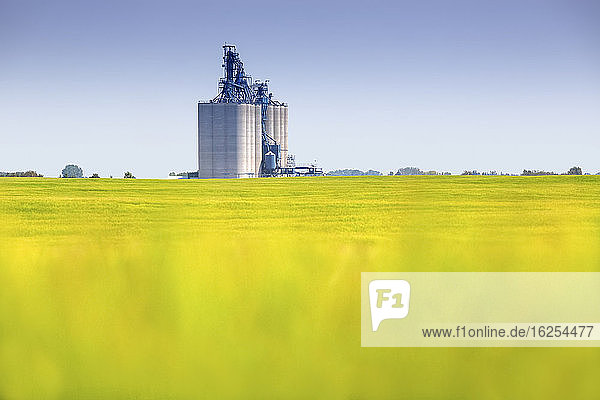 Blurred canola field in front of automated grain terminal with storage silos for loading cereal crops on freight trains for export; Alberta  Canada
