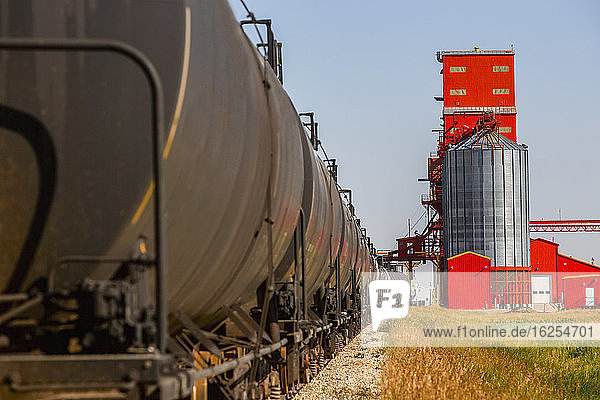 Close-up of freight train with tank cars lined up for loading at grain silo on a sunny day; Alberta  Canada