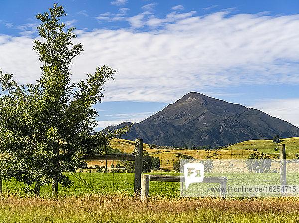 Üppiges Ackerland und ein spitzer Berg auf der Südinsel Neuseelands; Wanaka  Southland Region  Südinsel  Neuseeland