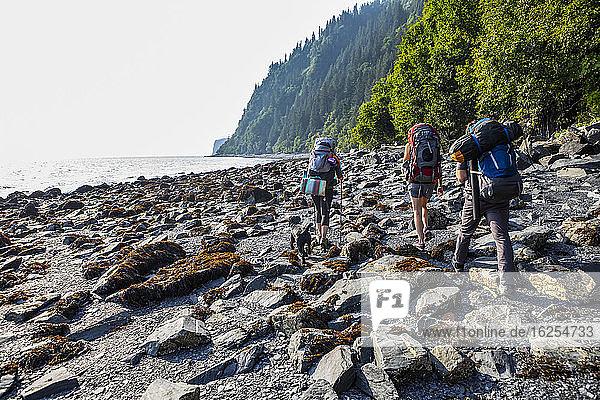 Millennials (ein Mann  zwei Frauen) auf Rucksacktour an einem felsigen Strand mit ihrem schwarzen Laborhund ausserhalb von Seward  Alaska zum Caine's Head mit der Resurrection Bay zur Linken  an einem dunstigen Sommertag; Seward  Alaska  Vereinigte Staaten von Amerika