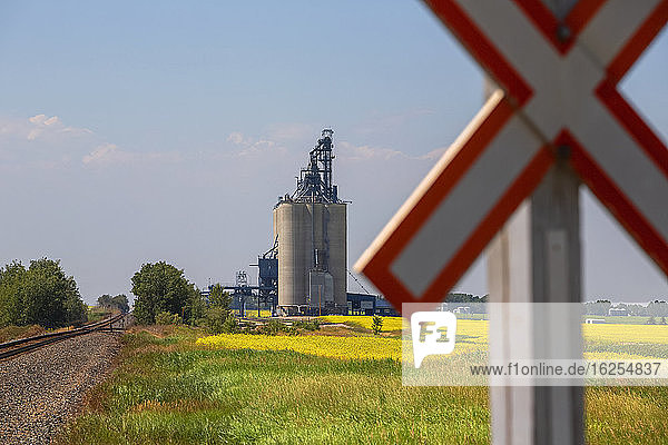 Close-up of railway crossing sign and grain terminal in the background with silos and bins for loading cereal crops on freight trains for export; Alberta  Canada