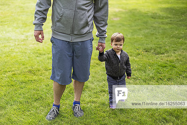 Ein Vater geht mit seiner kleinen Tochter im Gras und hält Händchen; North Vancouver  Britisch-Kolumbien  Kanada