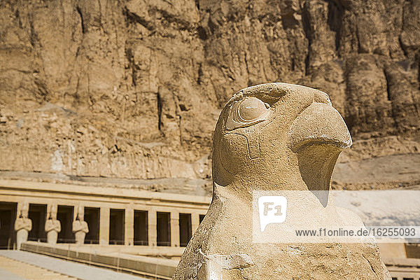 Falkenskulptur  Leichentempel der Hatschepsut (Deir el-Bahri)  UNESCO-Weltkulturerbe; Luxor  Ägypten