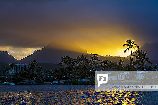 Silhouetted palm tree and mountains at sunset  Ka'elepulu Canal; Oahu  Hawaii  United States of America