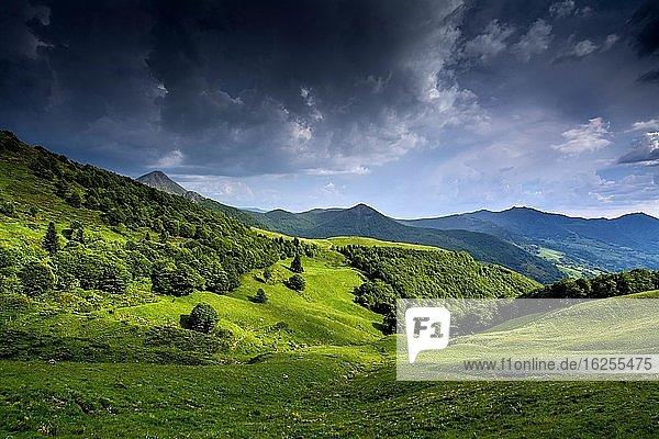 Blick auf die Berge Puy Griou und Monts du Cantal  Regionaler Naturpark der Vulkane der Auvergne  Departement Cantal  Auvergne-Rhône-Alpes  Frankreich  Europa