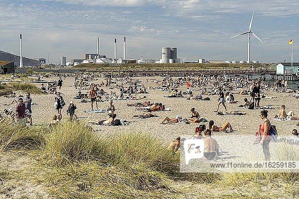 Amager Strandpark in Kopenhagen  D?nemark  Europa | Amager Beach Park in Copenhagen  Denmark  Europe.