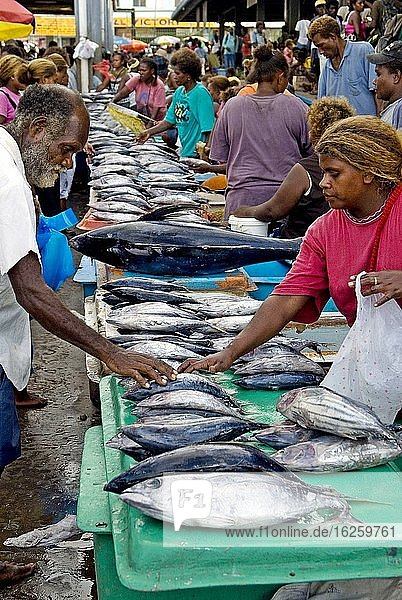 Selling fresh-caught tuna at the central market in Honiara  Solomon Islands.