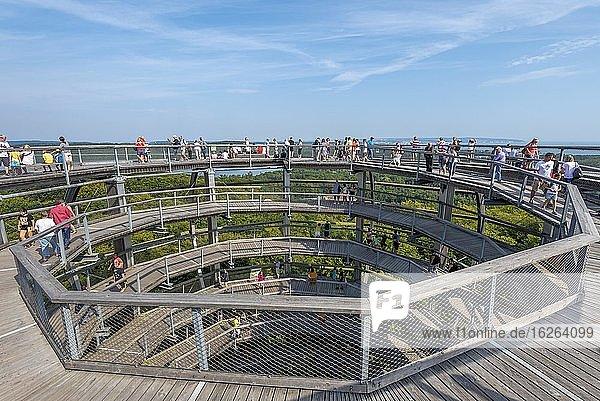 Tree top walk with tourists  Prora  Mecklenburg-Western Pomerania  Germany  Europe