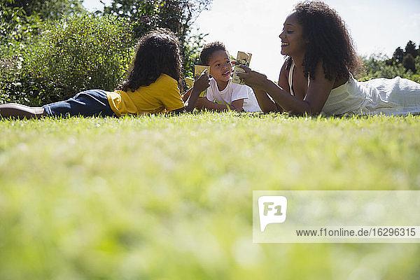 Glückliche Mutter und Kinder trinken Saftpackungen im sonnigen Sommergras