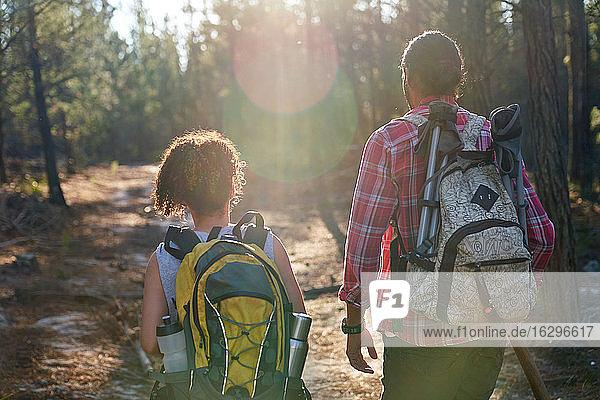 Junges Paar mit Rucksäcken wandert in sonnigen Sommerwäldern