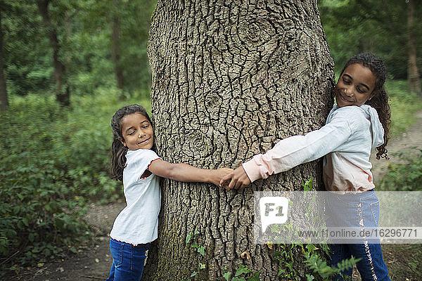 Gelassene Schwestern umarmen Baumstamm im Wald