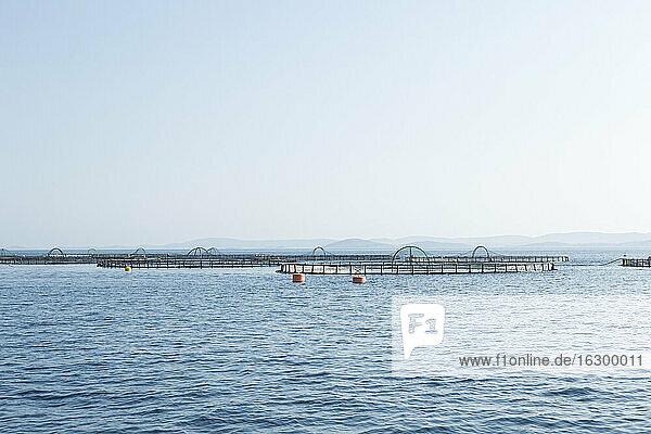 Kroatien  Dalmatien  Fischzucht in den Kornaten