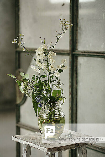 Flowering plant kept on table in room