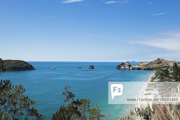 New Zealand  Coromandel Peninsula  Hahei Beach