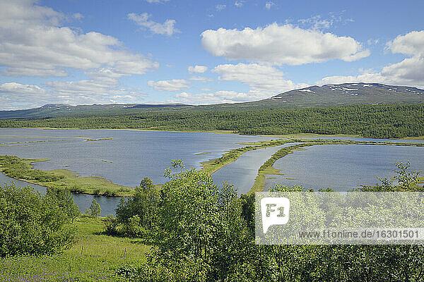 Sweden  Vilhelmina  River course in lake Kultsjoen