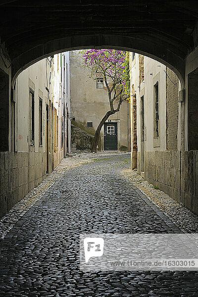 Portugal  Lissabon  Kleine kopfsteingepflasterte Straße durch einen Bogen