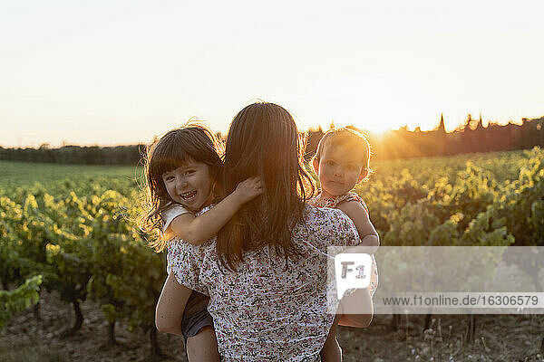 Mother and little daughters in a vineyard at sunset in Provence  France