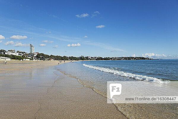 New Zealand  Auckland  Takapuna Beach